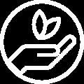 ICONA_ecologico